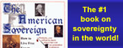 Brent Johnson's Book: The American Sovereign